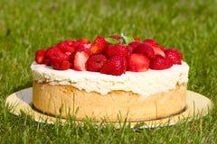 white för jordgubbe för bakgrundscake platta tjänad som Royaltyfria Foton