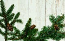 white för juldekorisolering Festlig ljus bakgrund med granfilialer och silverbollar, bästa sikt, begreppet av det nya året semest royaltyfria foton