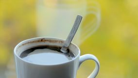 white för morgon för kappa för flicka för dressing för kaffekopp stock video