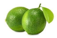 white för ny limefrukt för frukt för bakgrund tropisk saftig royaltyfri fotografi