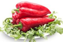white för paprika för bakgrundsmatbild Arkivbild