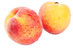white för persikor två Arkivfoton