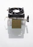 white för processor för modell för dator 3d Fotografering för Bildbyråer