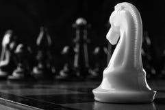white för schackriddarestycke royaltyfri foto