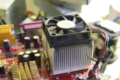white för skruvmejsel för reparation för adapterdatordiagram isolerad Royaltyfri Foto