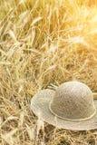 white för sugrör för bana för bakgrundsclipping hatt isolerad Arkivbild