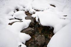 white för vatten för snowström genomskinlig ural Arkivfoto