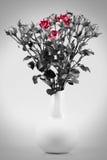 white för vatten för vase för ro för bakgrundsfärgmålning Fotografering för Bildbyråer