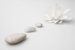 white för wellness för livstidsliljapebbles fortfarande Royaltyfria Bilder