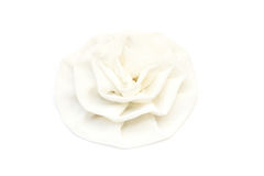 White fabric blossom rose Stock Images