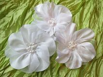 White fabric flower Royalty Free Stock Images
