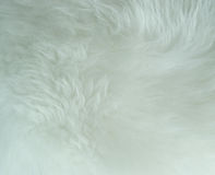 White fabric soft and puffy texture. Royalty Free Stock Images