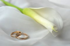 White  fabric and wedding rings Stock Photo