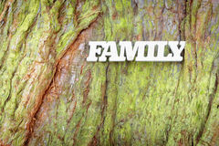 White family sign on old tree trunk texture. Family tree concept stock photo