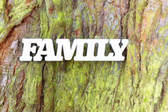 White family sign on old tree trunk texture. White family sign on green tree trunk texture. Family tree concept background royalty free stock images
