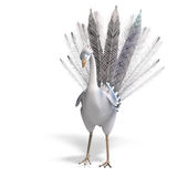 White fantasy bird with beautiful feathers Royalty Free Stock Photography