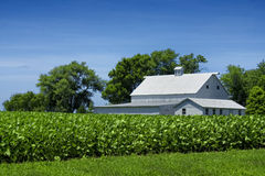 White Farm House By Field Stock Photography