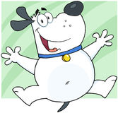 White Fat Dog Cartoon Character Jumping Royalty Free Stock Image