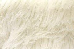 White Faux Fur Fabric Background Stock Photos