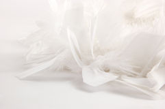 White feather background. Selection of feathers on a white background, shallow dept of field Royalty Free Stock Photo