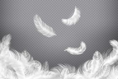 White feather background. Closeup bird or angel feathers. Falling weightless plumes. Dream illustration stock illustration