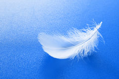 White feather on blue. One small white feather on textured blue background Royalty Free Stock Image