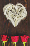 White feather heart and roses Stock Image