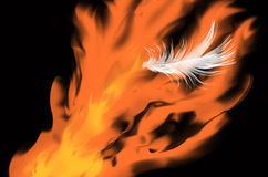 White feather and hot flame of fire. In the dark Royalty Free Stock Photography