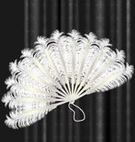 White feathers fan Royalty Free Stock Images