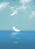 white feathers floating over ocean Stock Photography