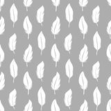 White feathers seamless pattern Stock Images