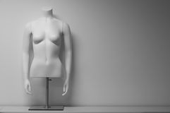 White female mannequin torso. On a stand in front of white background Royalty Free Stock Image