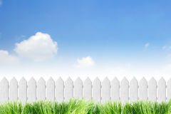 White fence. With grass on clear blue sky Stock Images