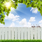 White fence Royalty Free Stock Images