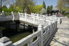 White fence bridge in the park Royalty Free Stock Images