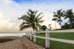 White fence, coconut tree and lawn on the beach Royalty Free Stock Images