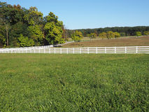 White fence by a country lane Stock Images