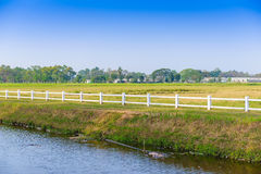 White fence in farm Royalty Free Stock Image