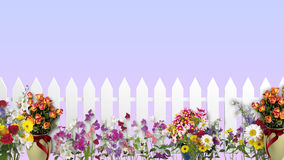 White fence with flowers Stock Photos