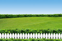 White fence with grass on blue sky. White fence with grass on clear blue sky stock photo