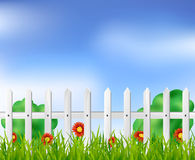 White fence with grass and flowers. White fence with grass, bushes and red flowers Stock Image
