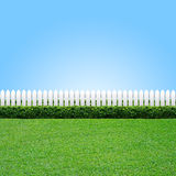 White fence and green grass. White fence and gree grass on blue sky stock image