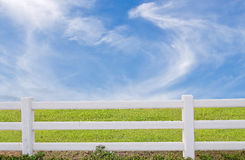White fence and green grass on blue sky Stock Images