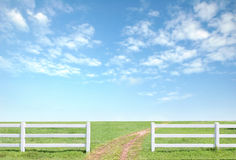 White fence on green grass Stock Images