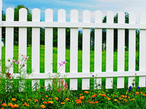 White fence on green grass with flowers. Royalty Free Stock Photography