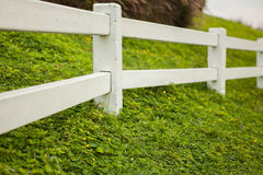 White fence on green grass Royalty Free Stock Photography