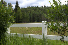 White Fence in the Meadow Stock Images