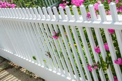 White fence with pink flowers Stock Photography