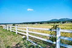 White fence of ranch farmhouse idyllic rural scenery landscape. White fence and ranch farmhouse Idyllic rural scenery landscape in nature with hill background royalty free stock images