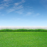 White Fence with shrub and grass. White fence with shrub and green grass on blue sky Royalty Free Stock Images